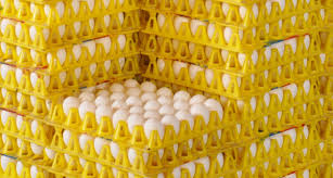 Huevo a la venta