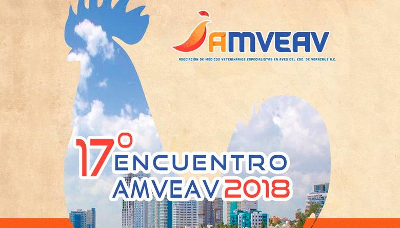 17º Encuentro AMVEAV 2018