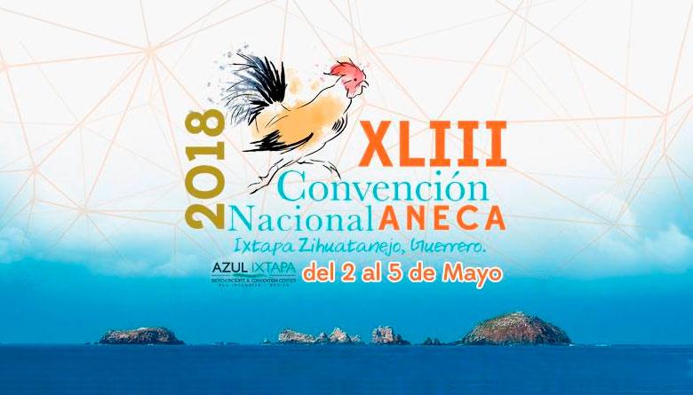 XLIII Convención Anual ANECA 2018
