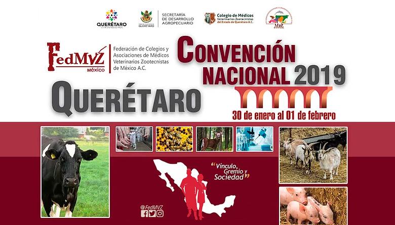 Convención Nacional 2019 de FedMVZ México