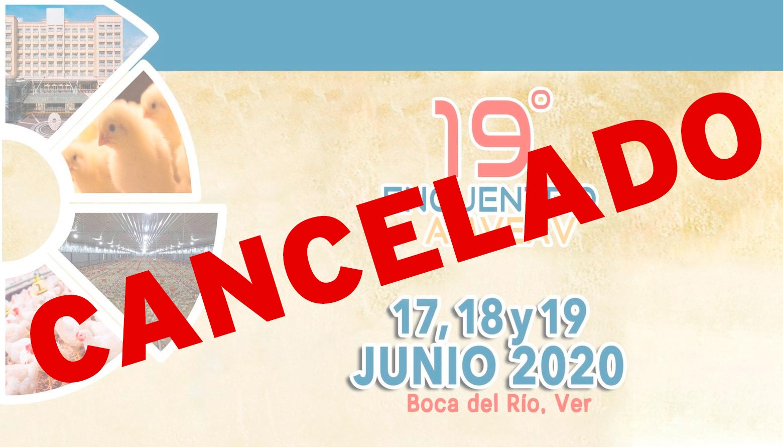 19º Encuentro  AMVEAV 2020