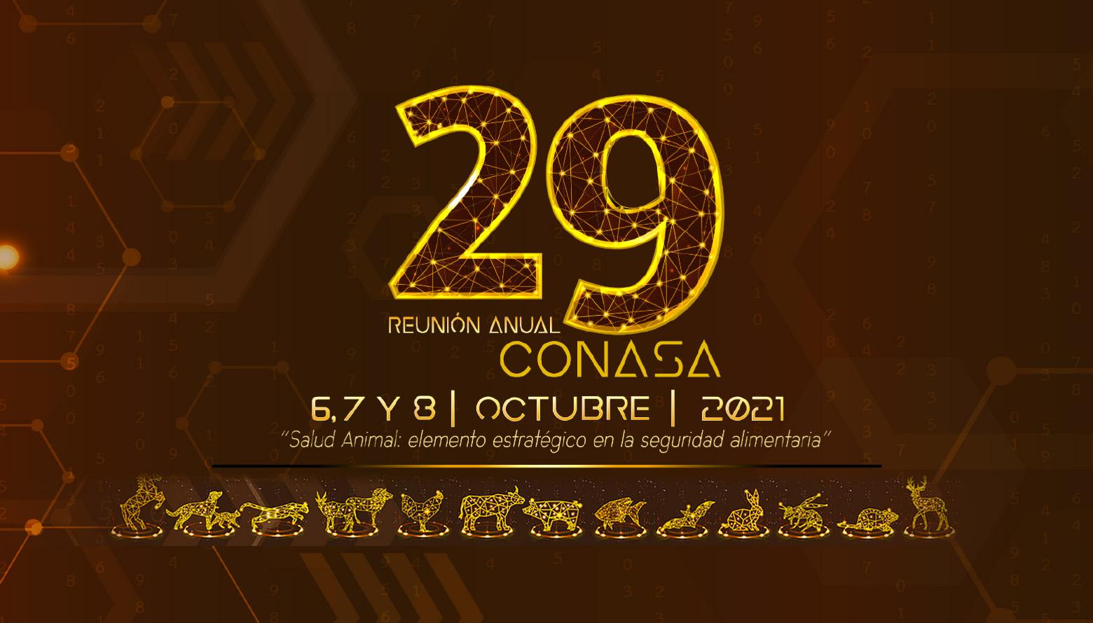 29 Reunión anual CONASA 2021