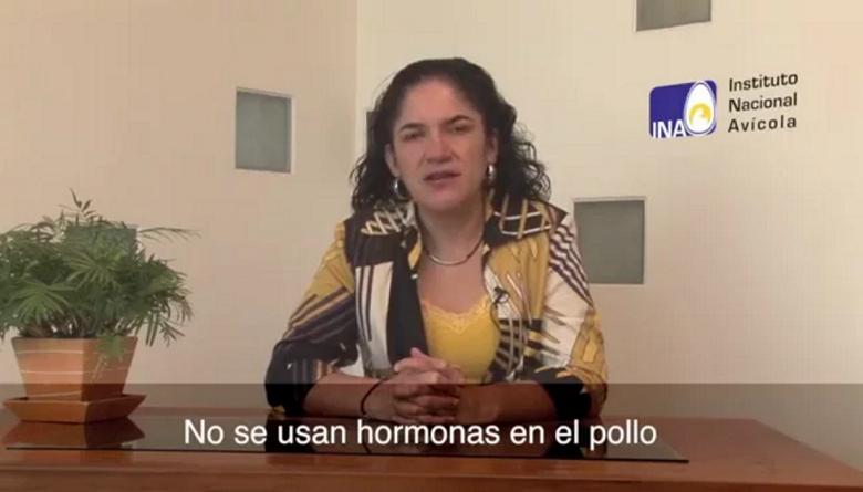 Por qué no se usan hormonas en el pollo