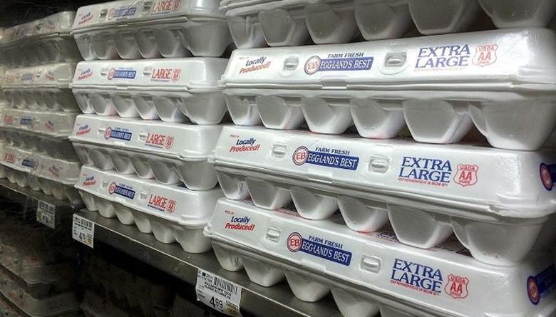 Quieren bloquear ley enfocada en la producción de huevo en California