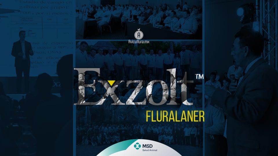 MSD Salud Animal lanzó Exzolt™, herramienta para el control de ácaros en la avicultura