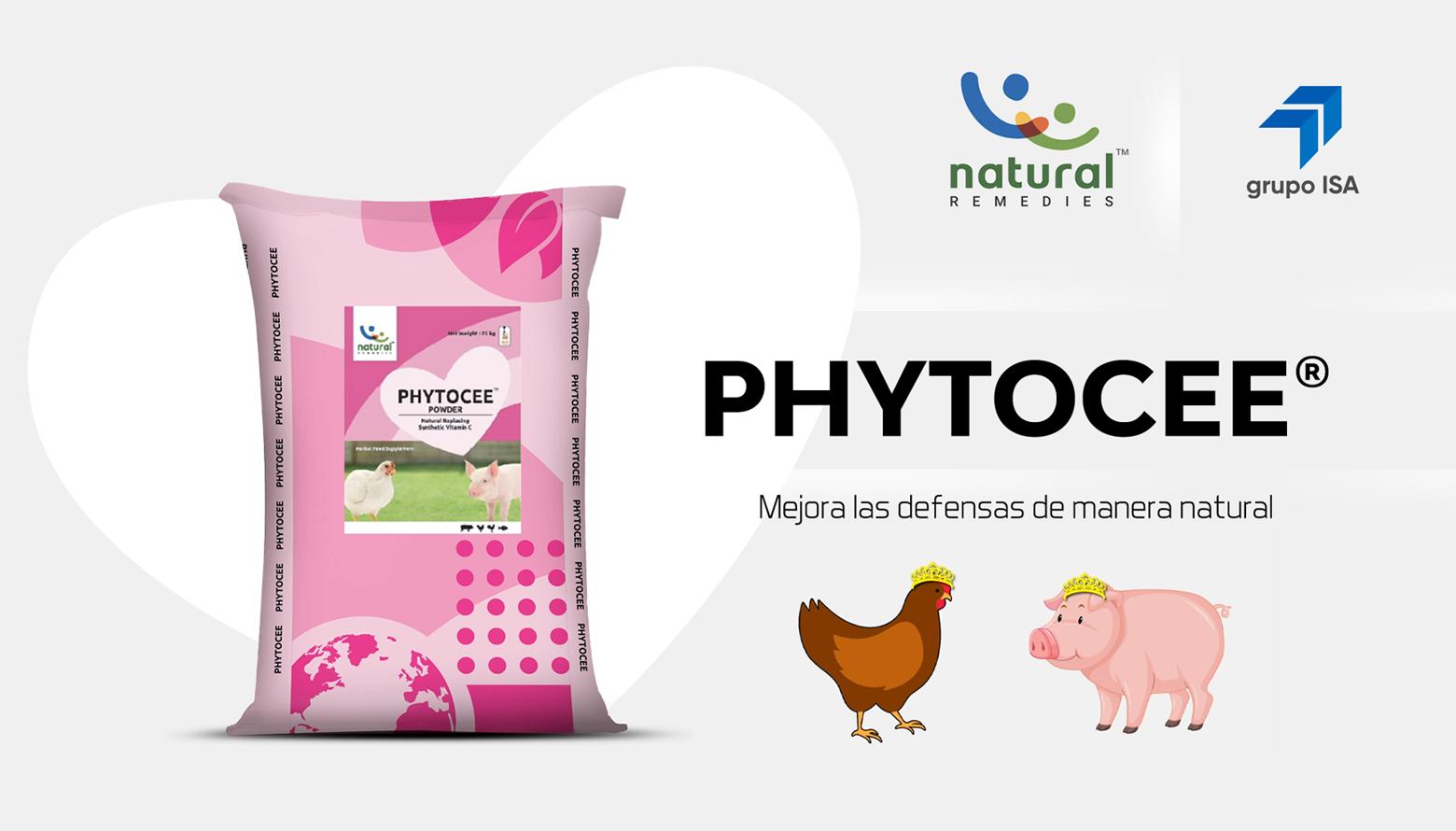PHYTOCEE® Mejora las defensas de manera natural